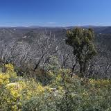 Brindabella National Park